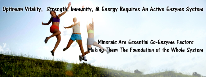 Minerals Are Essential Co-Enzyme Factors