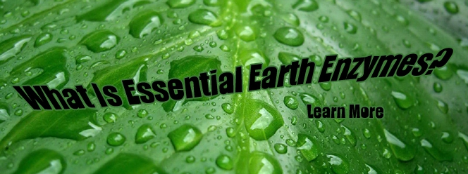 What is Essential Earth Enzymes?